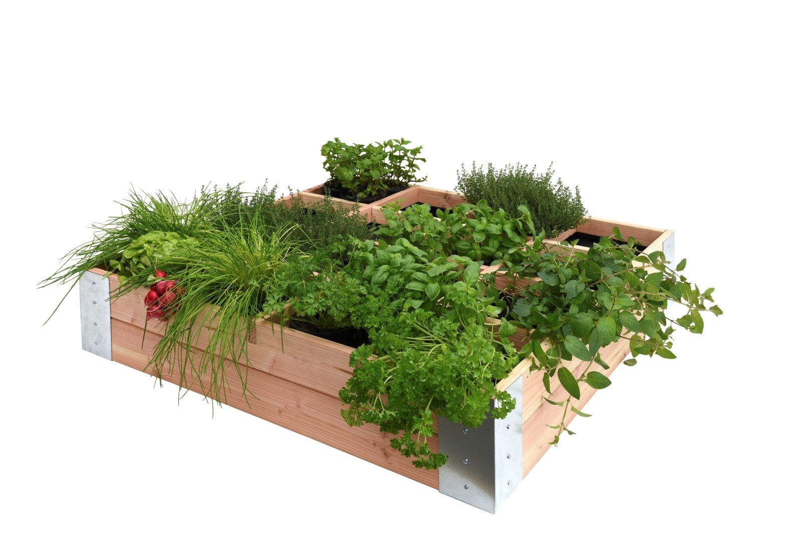 Minigarden vierk-Douglas 100 x 100 x 20 cm