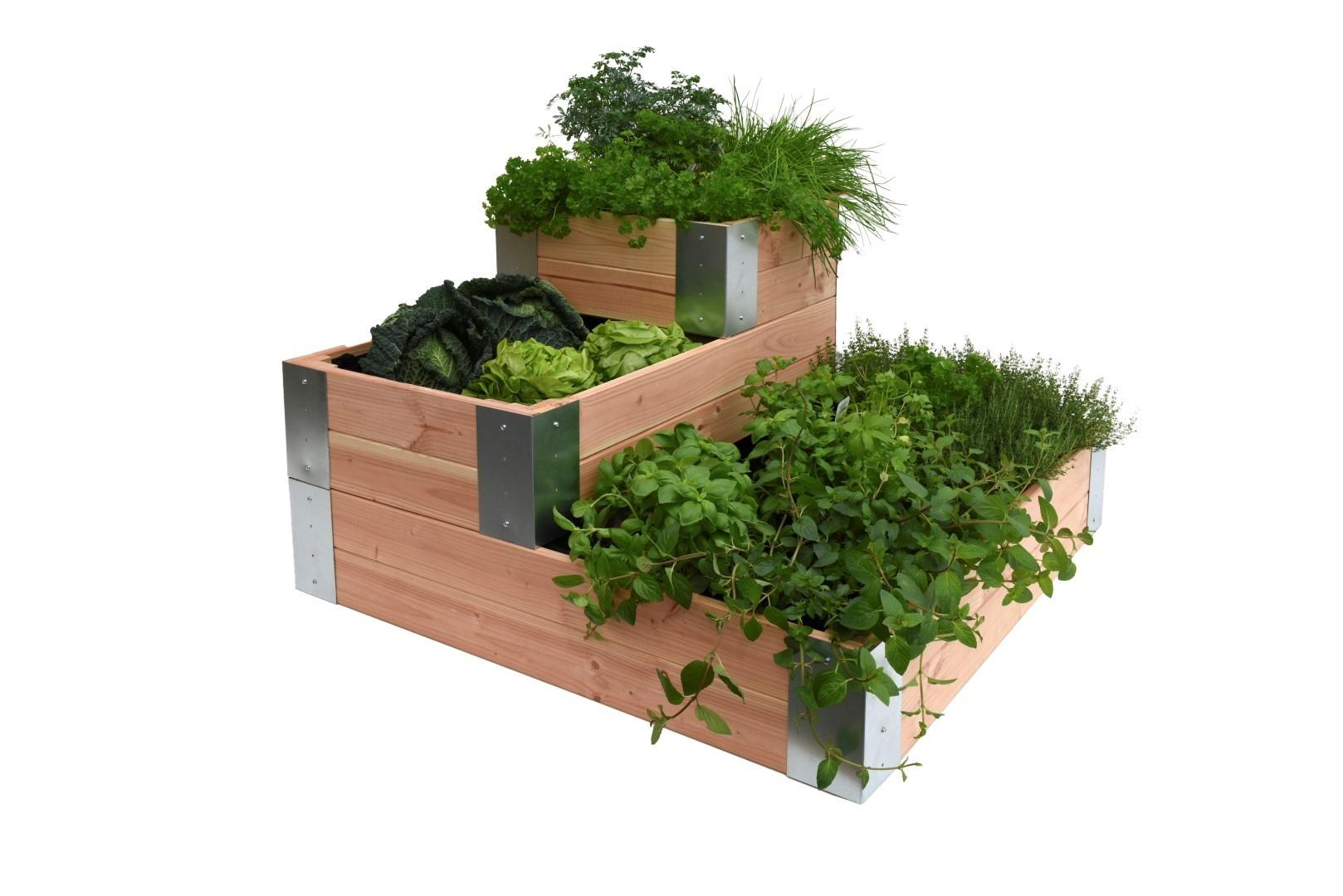 Minigarden hoek-Douglas 50 x 100 cm