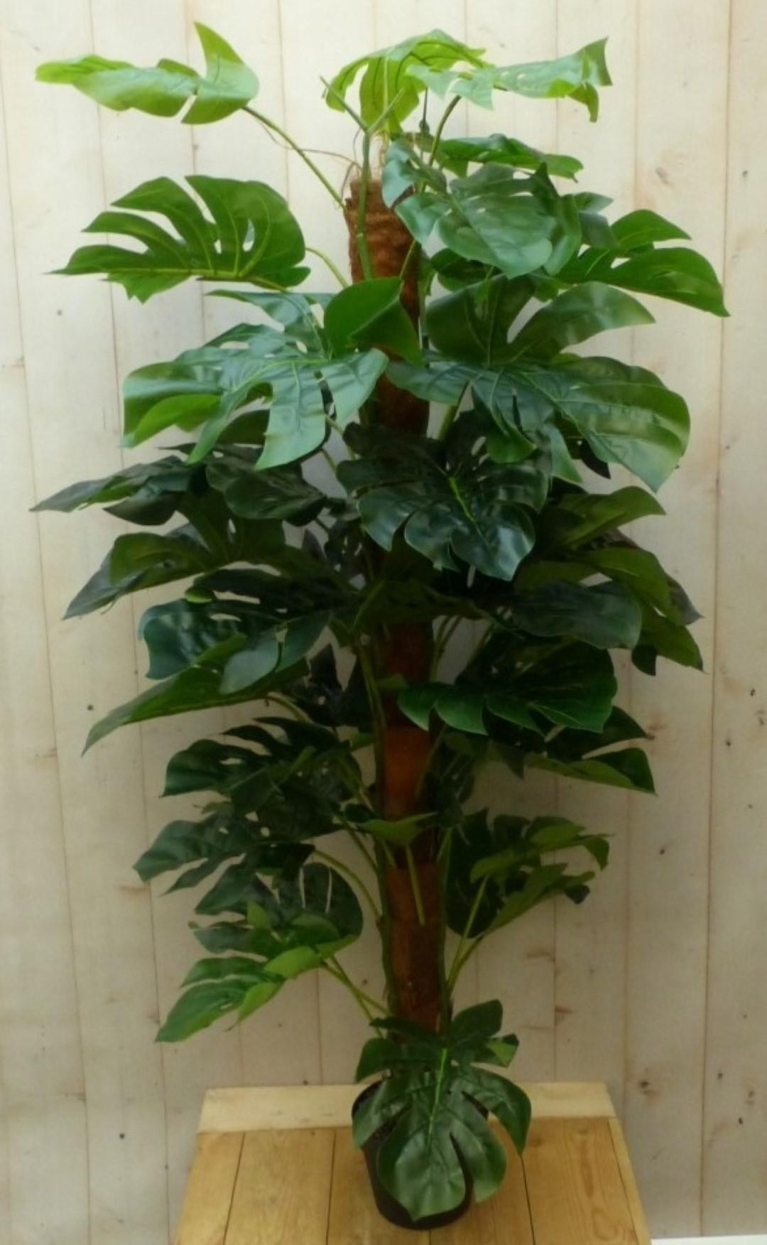 Kunstmonstera op stam groen hoog 150 cm