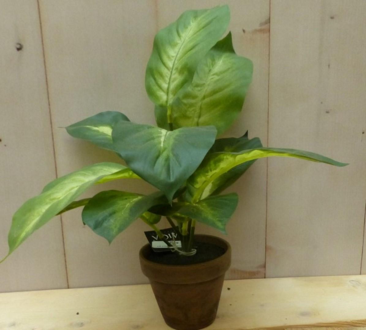 Kunstkamerplantje in pot 30 cm