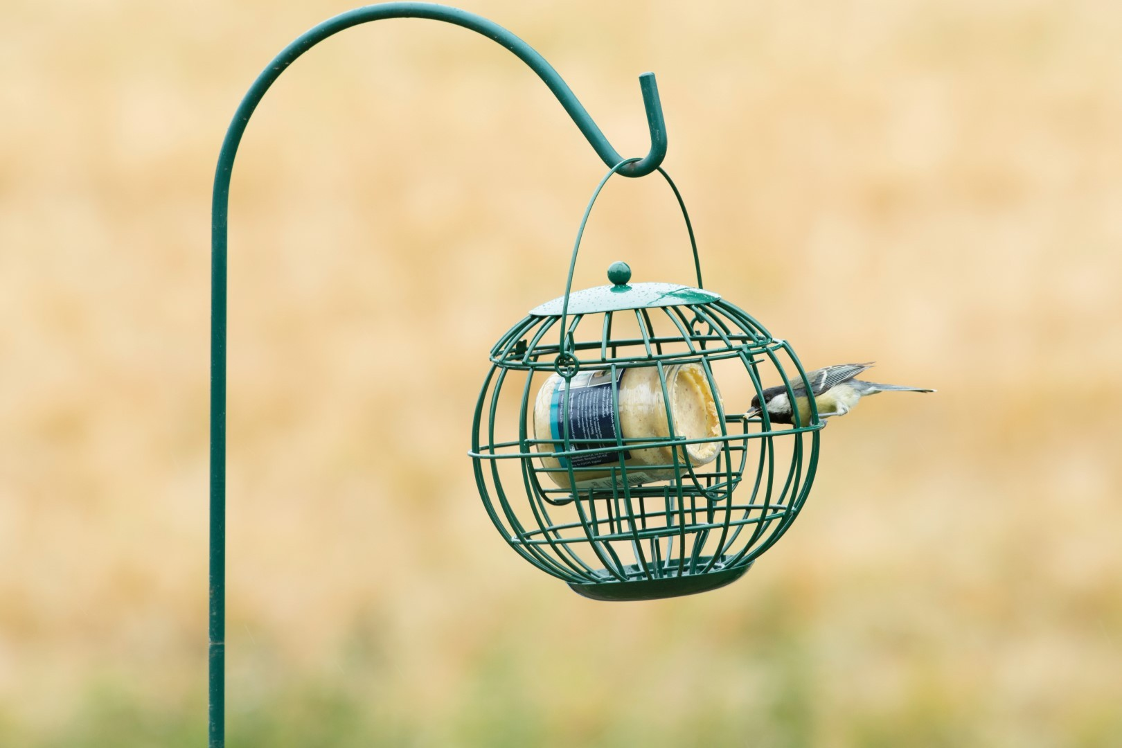 Vogelvoer Pindakaaspothouder London CJ Wildlife