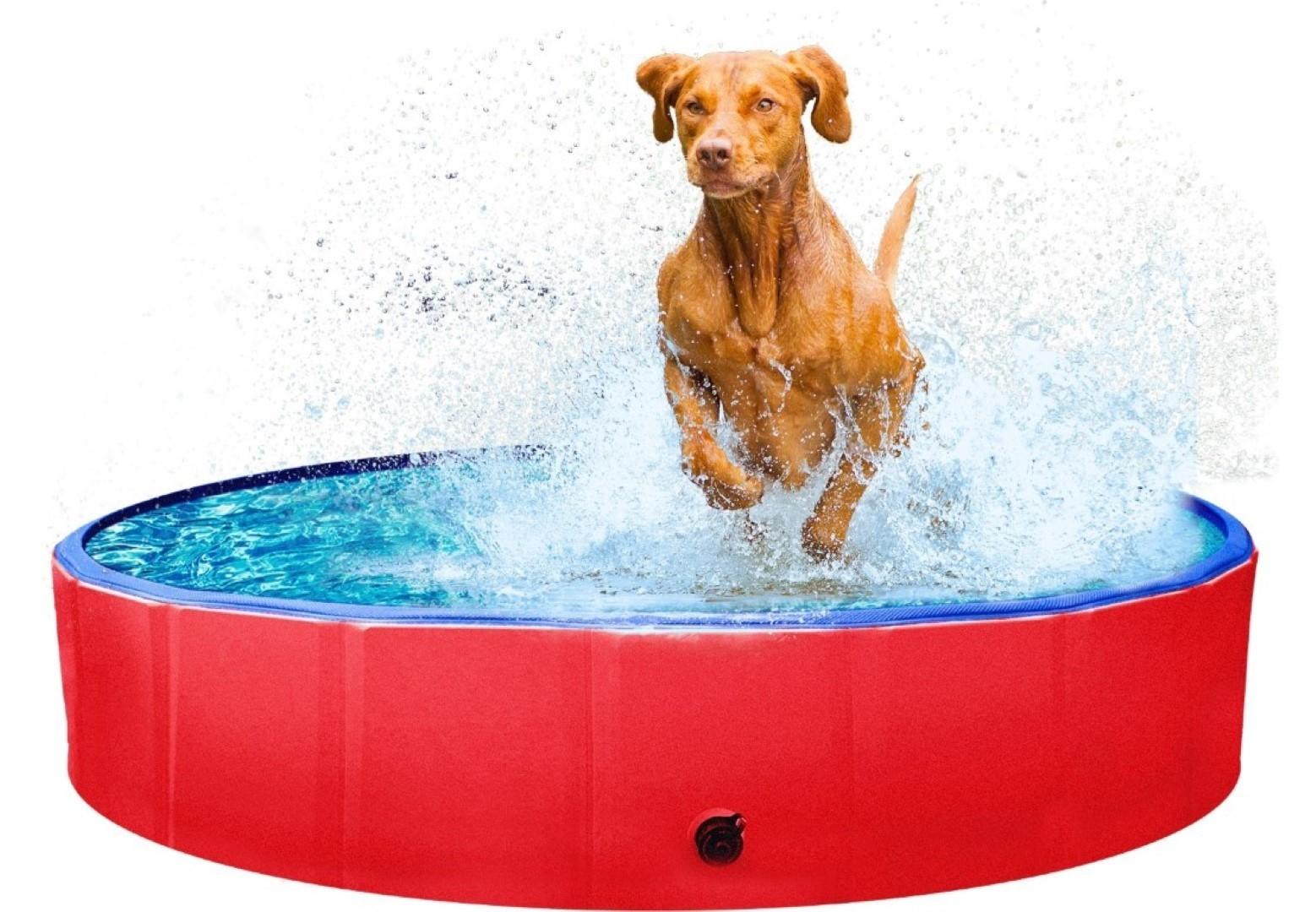 Kowloon hondenzwembad anti-slip 160x30 cm (L) rood/blauw
