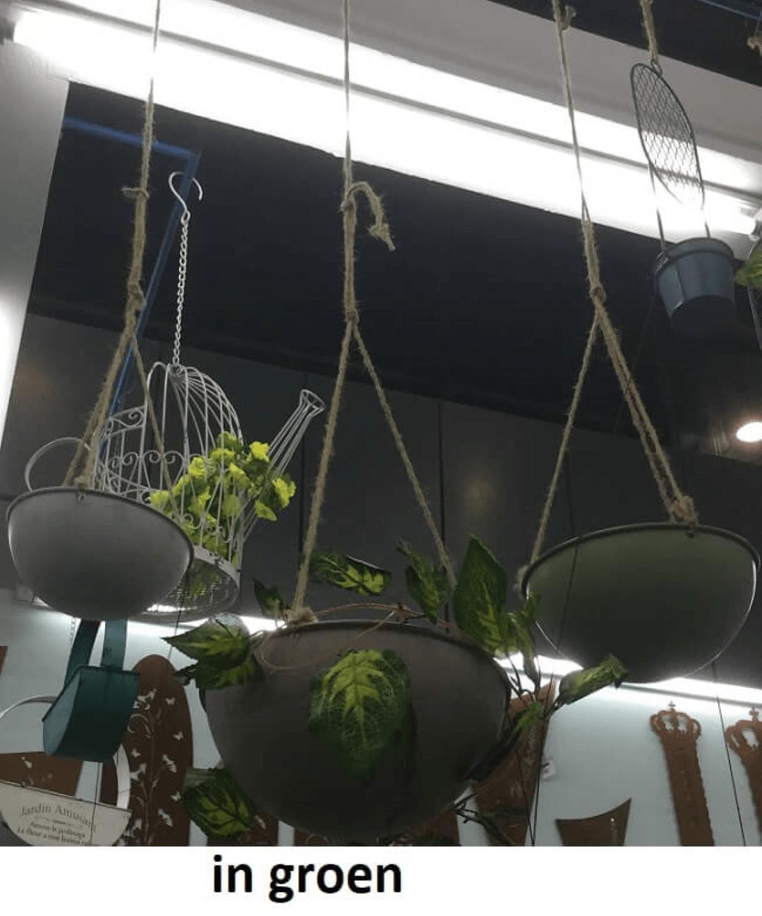 Hanging basket groen Dia 26x11cm