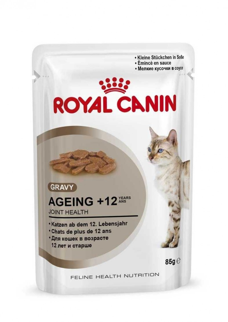 Kattenvoer Droogvoer kat verouderd jaar 12 Royal Canin