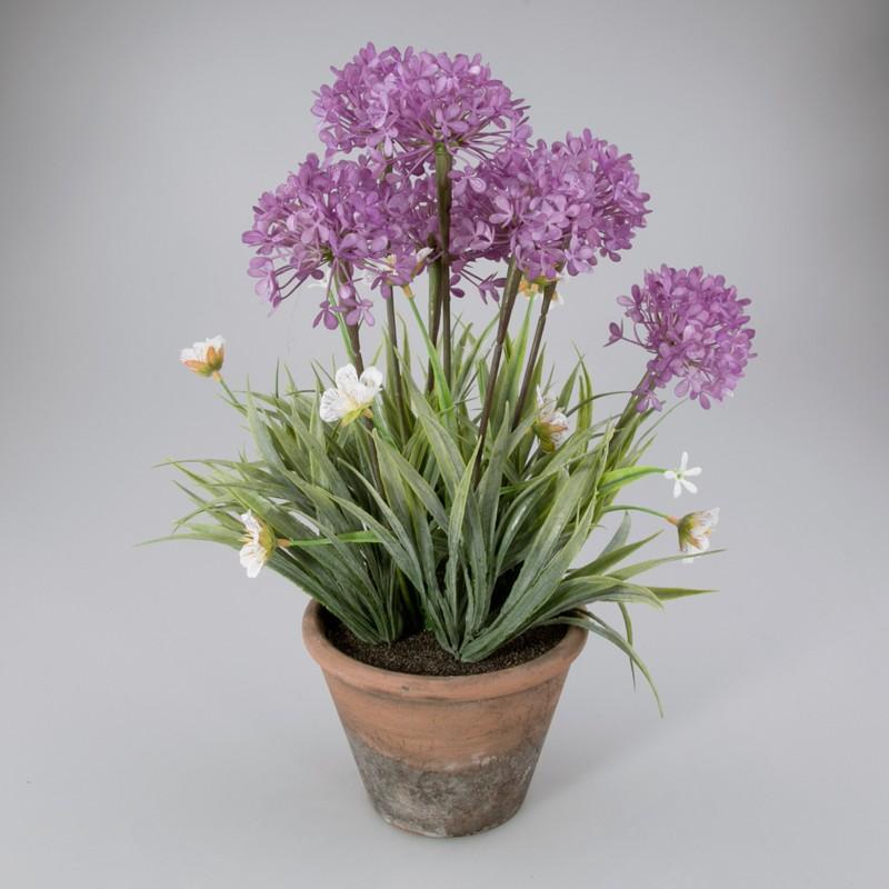 Voorjaarsplant in keramiek pot paars