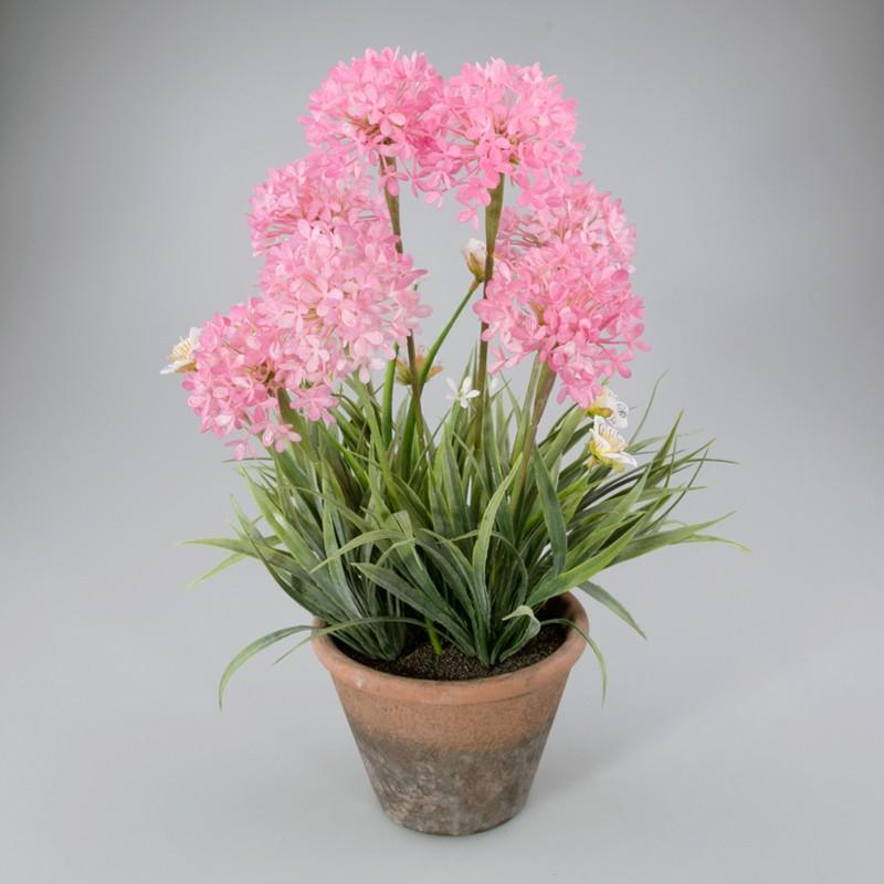 Voorjaarsplant in keramiek pot roze