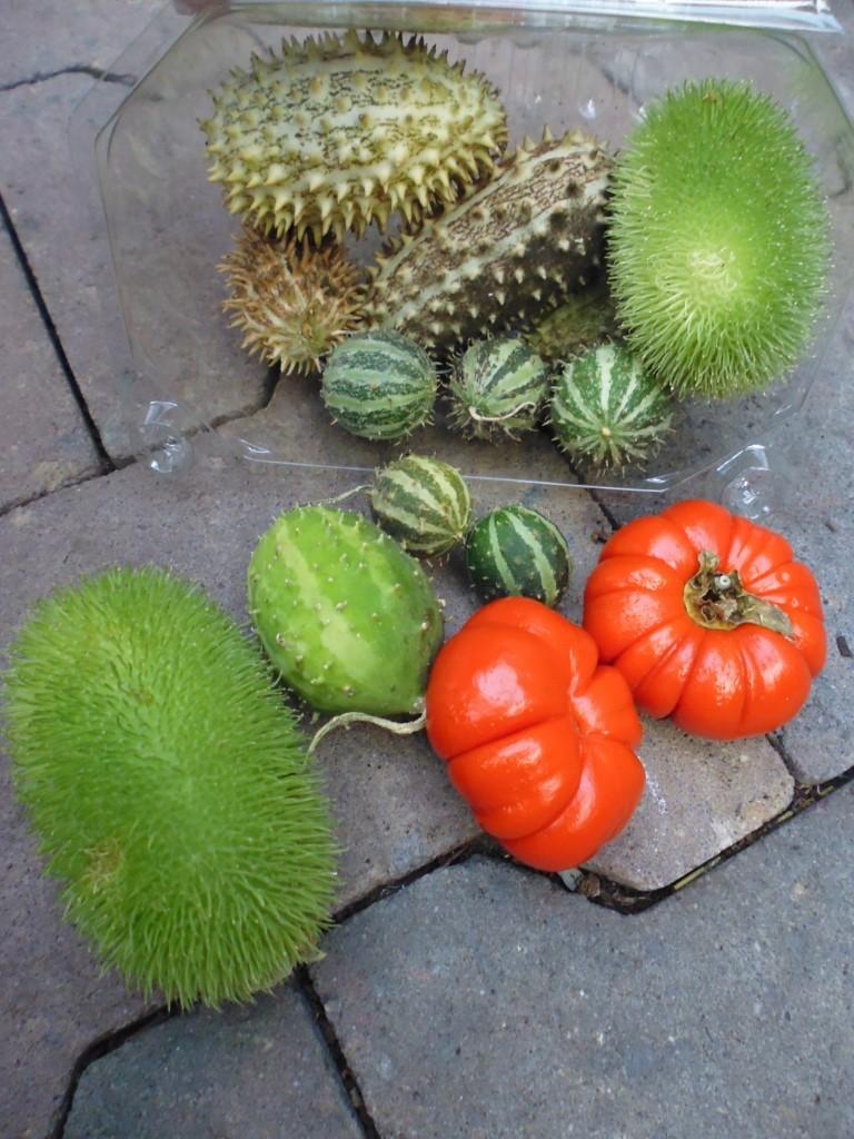 Sierfruit diverese soorten siervruchten per pakje