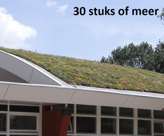 Minimaal 30 stuks! Sedummixmat Compleet (incl. drainage type 11c & daktuinsubstraat) per 1.2 m2 max.