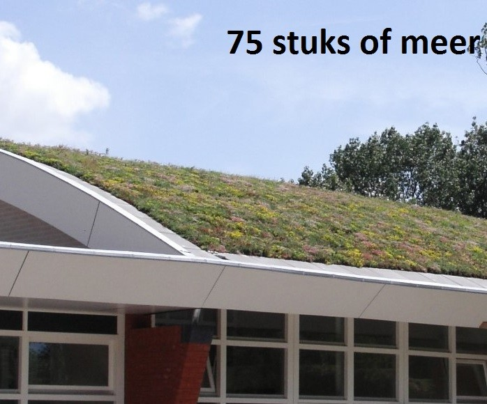 Minimaal 75 stuks! Sedummixmat Compleet (incl. drainage type 11c & daktuinsubstraat) per 1.2 m2 max.
