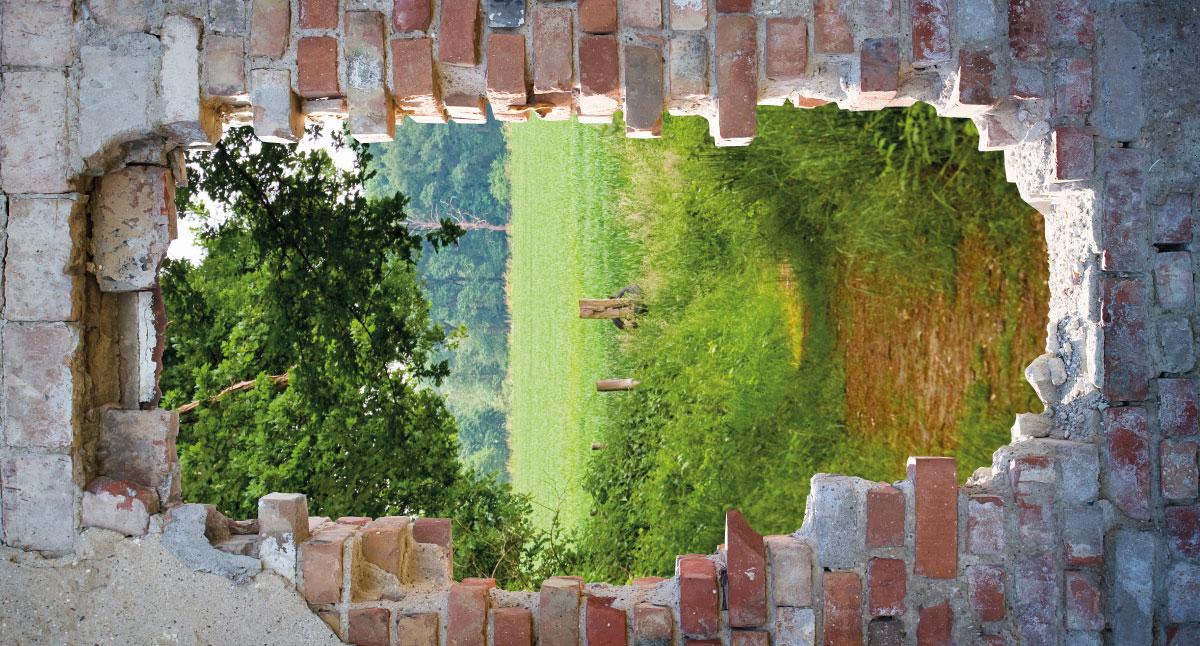 Tuinschilderij doorkijk pad muur 70x130 cm