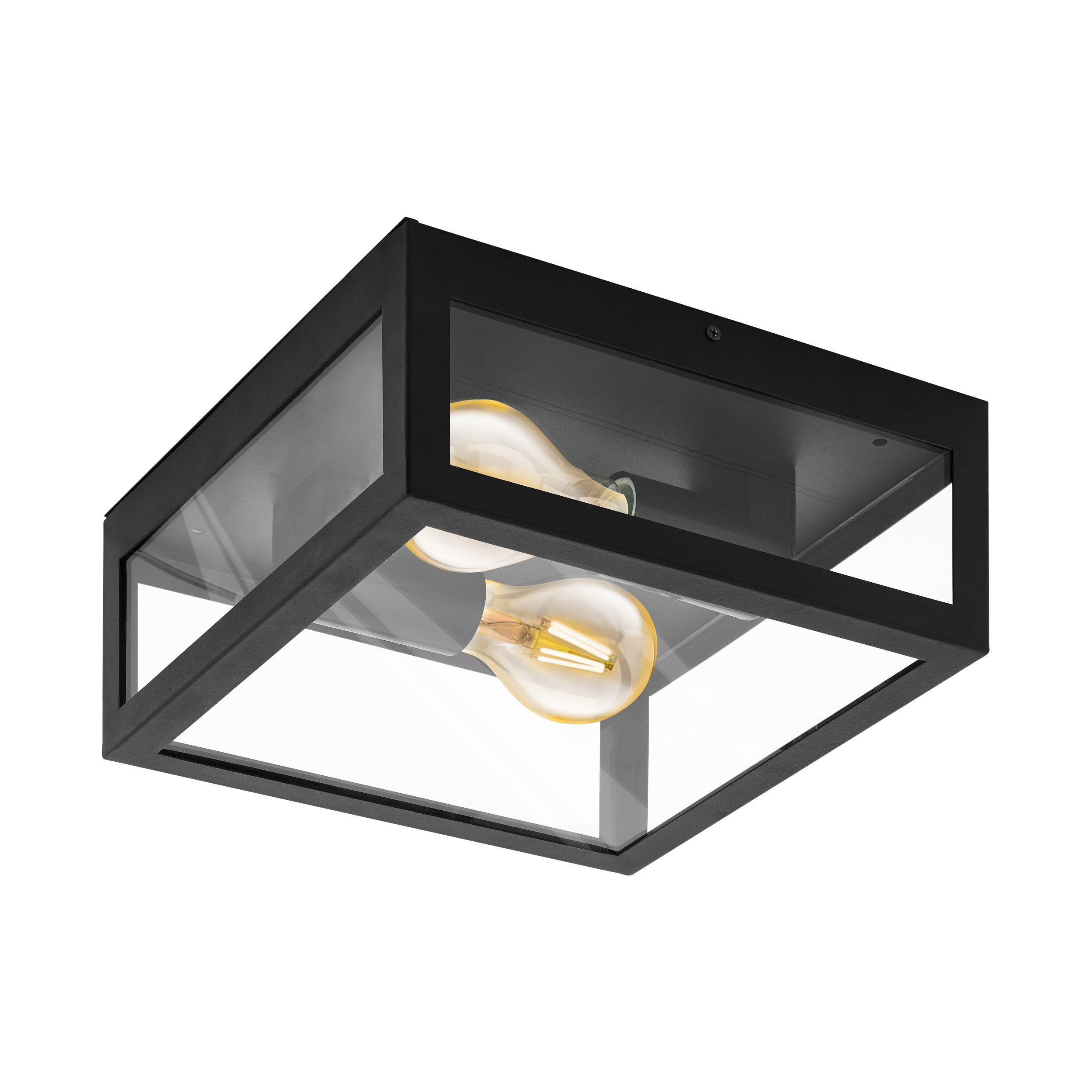 Wandlamp/plafondlamp alamonte 1 zwart-glas 2xE27