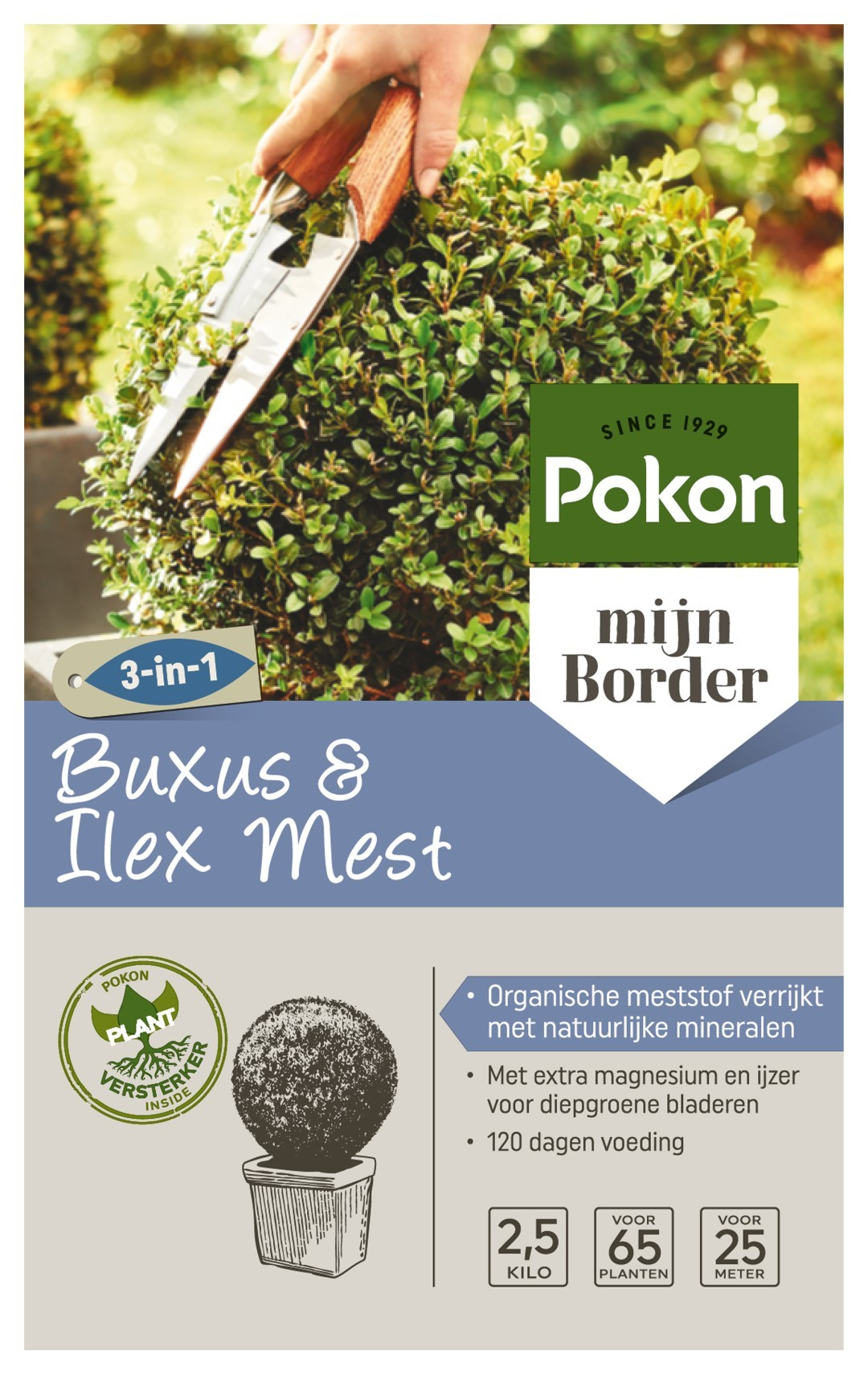 Buxus Voeding 2,5kg