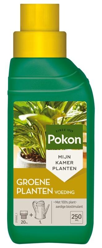 Pokon Groene planten Voeding 250 ml