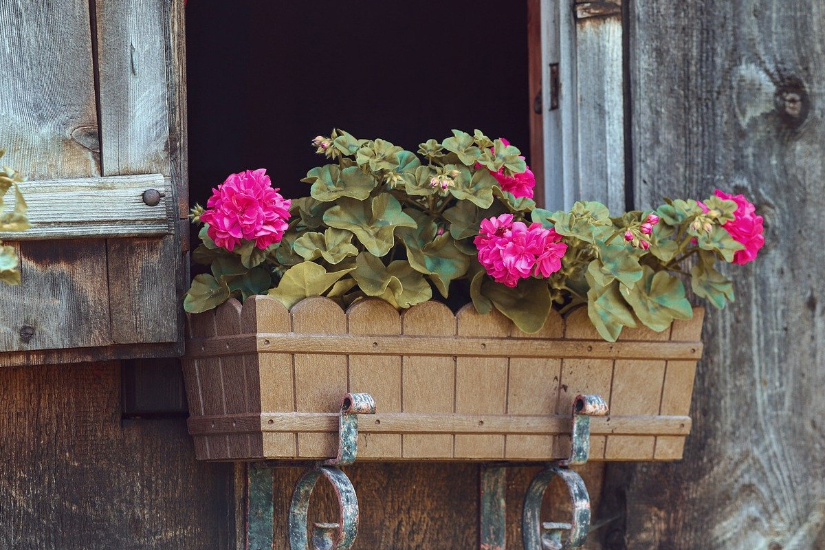 Balkonbakken beplanten